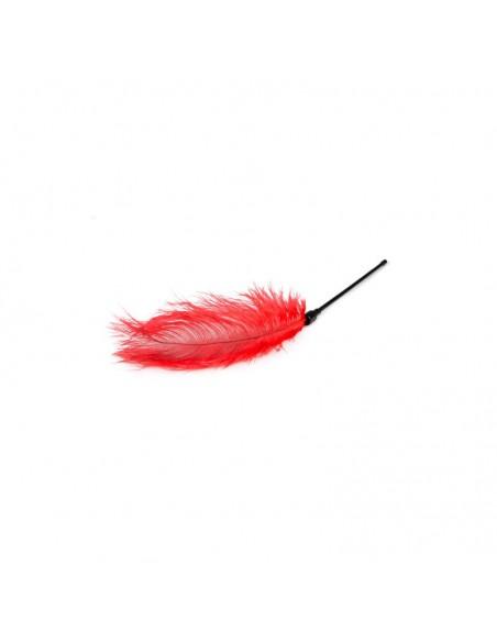 Plumero Rojo